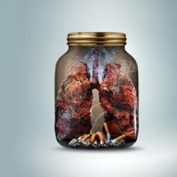 Journée Mondiale Sans Tabac  Les maladies pulmonaires