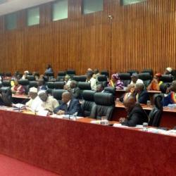 Faut-il modifier la Constitution en Guinée ?