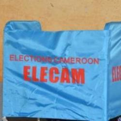 JDA - Lendemain d'élections au Cameroun
