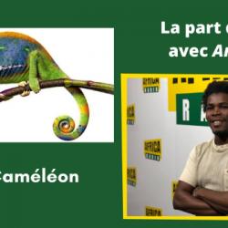 Maître Caméléon (2ème partie)