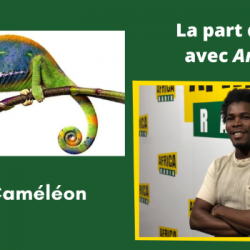 Maître Caméléon (4ème partie)